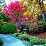 Decoração de Jardins – Fotos
