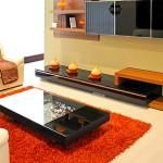 Tapetes para decoração de salas