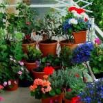Decoração de Jardins Pequenos – Dicas e Fotos
