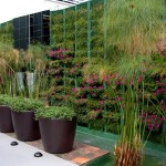 decoracao-de-jardim-com-vasos
