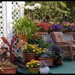 Decoração de Jardins com Vasos, Fotos e Idéias para Decorar