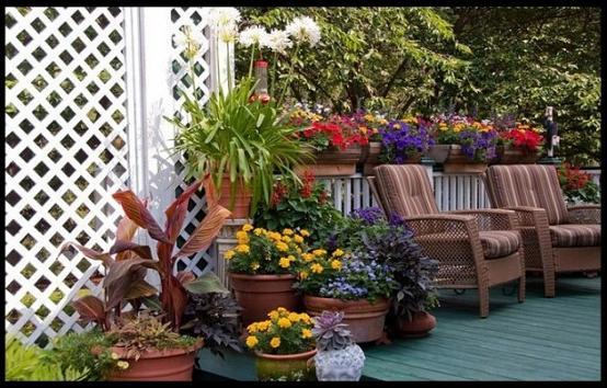 Decoração de Jardins com Vasos