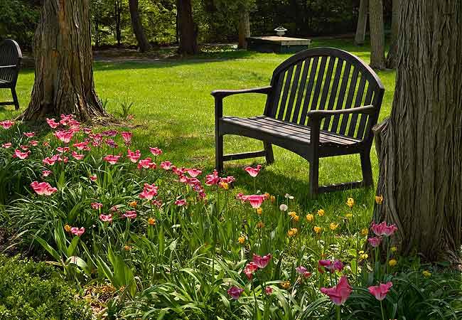 jardins pedras fotos:Móveis para Jardins, Dicas de Decoração