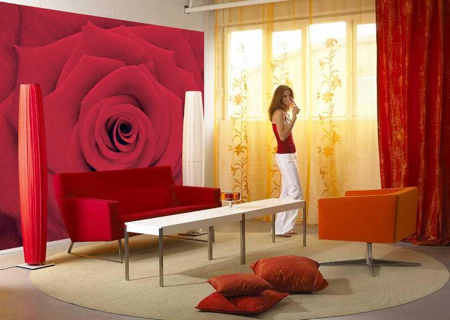 Paredes decoradas para sala dicas e fotos for Fotos para decorar paredes