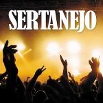 Melhores Sertanejos 2013, Lista de Músicas
