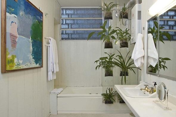 decoracao de ambientes pequenos banheiros:Plantas Para Banheiro