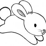 desenhos-de-coelho-para-imprimir-e-colorir-2