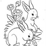 desenhos-de-coelho-para-imprimir-e-colorir-9