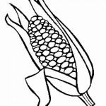 desenhos-juninos-para-colorir-e-imprimir-9