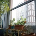 jardim-para-apartamento-8