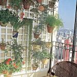 jardim-para-apartamento-9