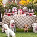 decoracao-de-festa-para-cachorros