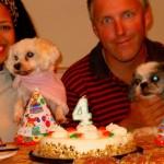 decoracao-de-festa-para-cachorros-2