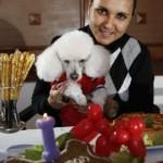 decoracao-de-festa-para-cachorros-5