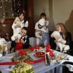 decoracao-de-festa-para-cachorros-6