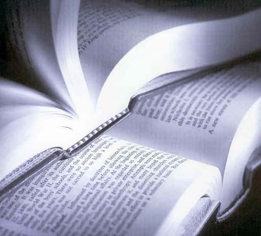 bibliografia-de-acordo-com-as-normas-abnt