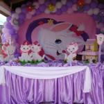 decoracao-de-festa-infantil-marie-5