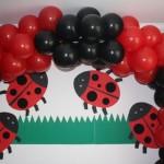 decoracao-para-festa-infantil-tema-joaninha-4