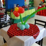 decoracao-para-festa-infantil-tema-joaninha-9