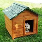 Modelos de Casinhas para Cachorros