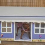 modelos-de-casinhas-para-cachorros-8