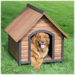 modelos-de-casinhas-para-cachorros-9