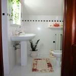 banheiro-decorado-com-plantas-9
