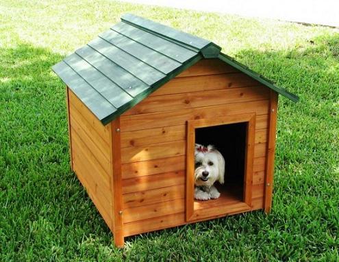 como-construir-casinha-de-cachorro-3