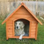 como-construir-casinha-de-cachorro-5