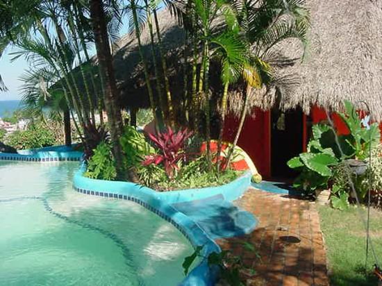 fotos jardim piscina : fotos jardim piscina:Piscinas Decoradas com Jardim: Fotos
