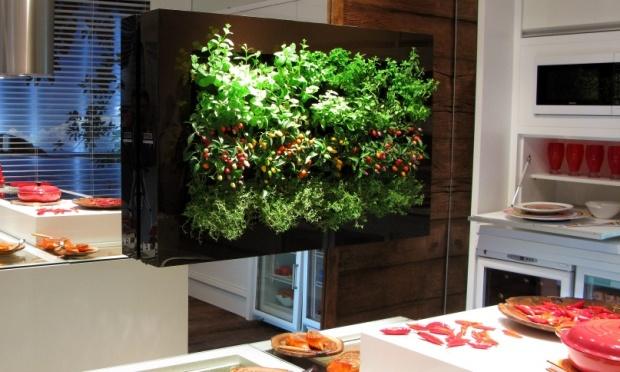 jardim vertical apartamento pequeno:Portanto fazer um jardim vertical em sua casa ou apartamento não é