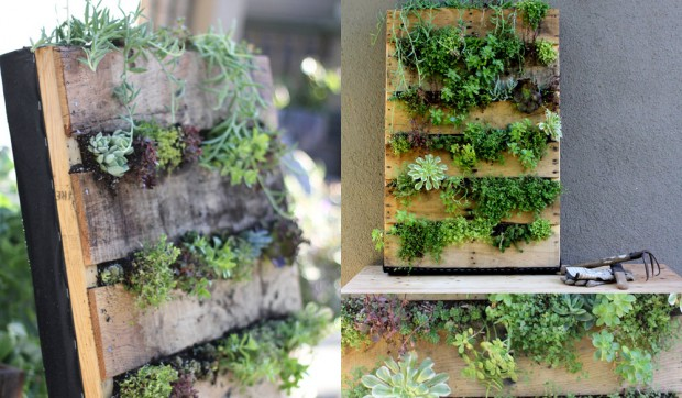Como Fazer um Jardim Vertical em Sua Casa ou Apartamento – Modelos