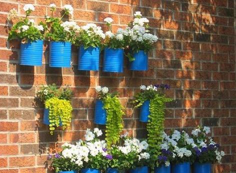 jardim-vertical-em-casa-ou-apartamento-5