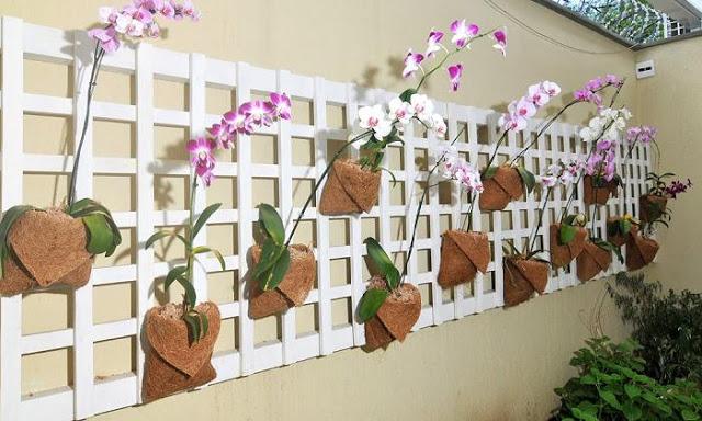 jardim vertical em muro:Como Fazer um Jardim Vertical em Sua Casa ou Apartamento – Modelos