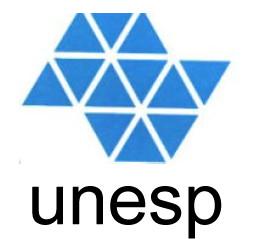 Vestibular UNESP 2015