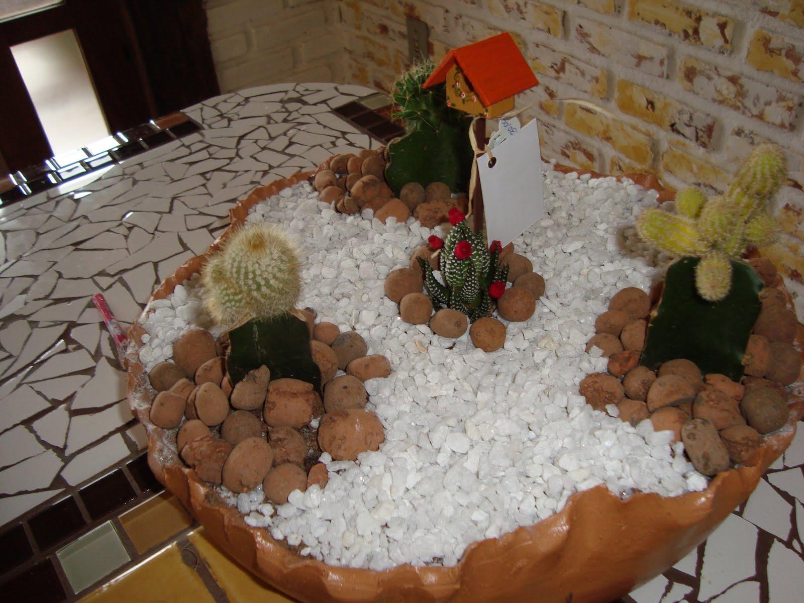 mini jardim de cactus:12 modelos de mini jardins, veja como eles são feitos e não deixe de