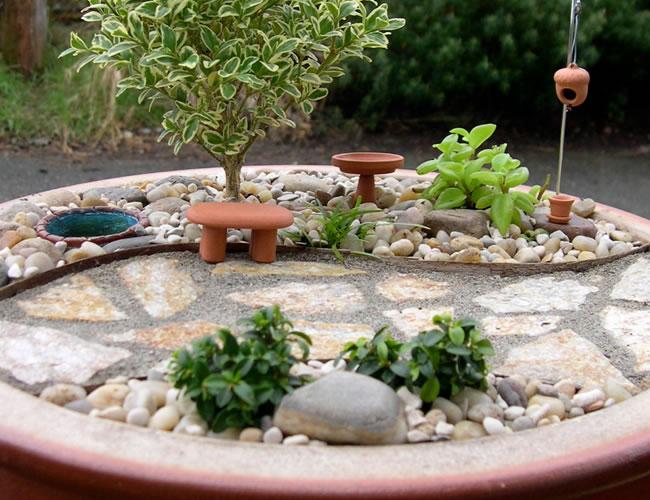 mini jardim de vidro:12 Modelos de Mini Jardins para dentro de Casa