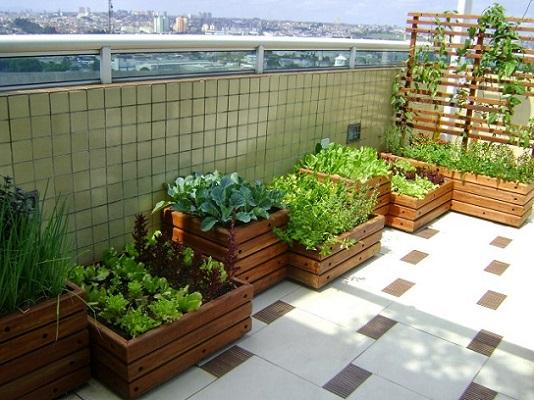 como-fazer-uma-horta-em-casa