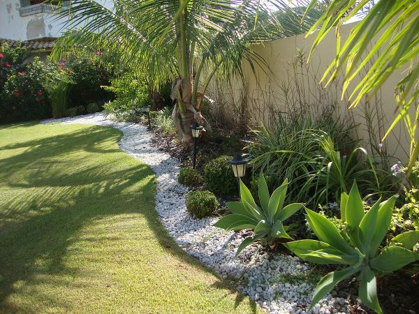 de jardins com coqueiros é sempre muito procurada, pois essa planta